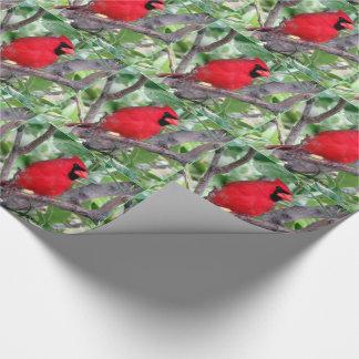 Papel de embalaje cardinal