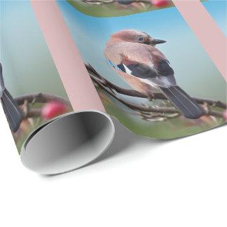 Papel de embalaje de Jay del eurasiático