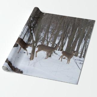 "Papel de embalaje de los ciervos, 30"" x 6'"