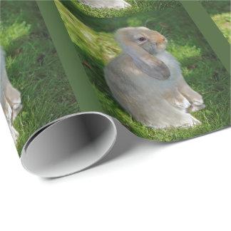 Papel de embalaje del conejo de Minilop del bebé