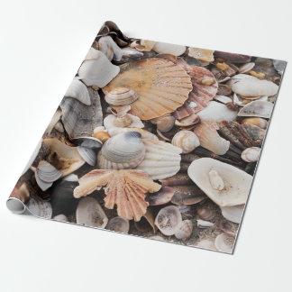 Papel de embalaje del diseño de la cáscara del mar