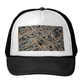 Papel de la bolsita de té debajo del microscopio gorras de camionero