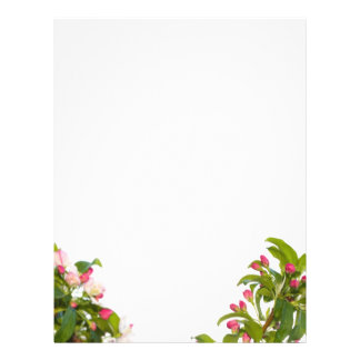 Papel de papel con membrete de los flores del árbo folleto 21,6 x 28 cm