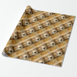 Papel De Regalo Año Nuevo chino de los ojos de oro del perro