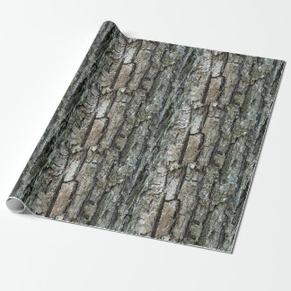 Papel De Regalo Corteza vieja del pino de la naturaleza