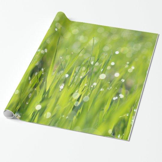 Papel De Regalo Descensos de rocío en hierba