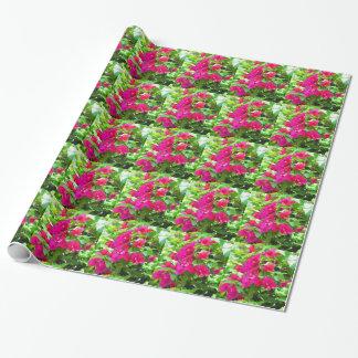 Papel De Regalo Emblema floral del bougainvillea de la flor del