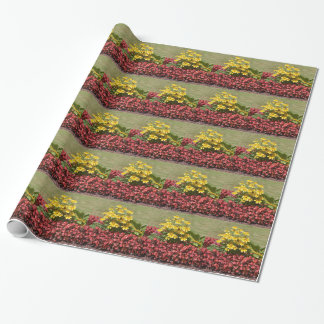 Papel De Regalo Macizo de flores de coneflowers y de begonias
