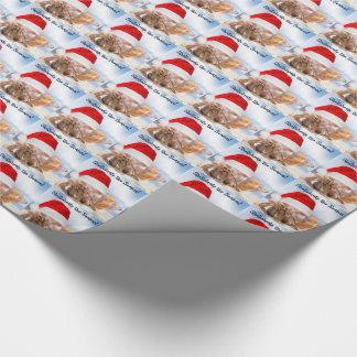 Papel De Regalo Navidad del cangrejo de ermitaño pequeño