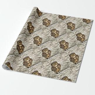 Papel De Regalo Pequeño búho en camuflaje