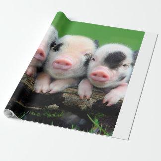 Papel De Regalo Tres pequeños cerdos - cerdo lindo - tres cerdos