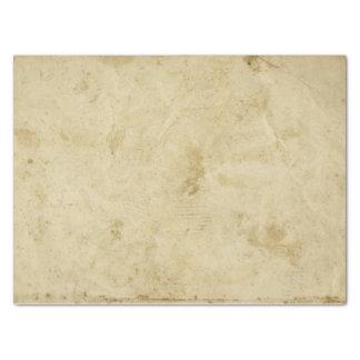 Papel De Seda Esconda retro antiguo beige manchada del pergamino