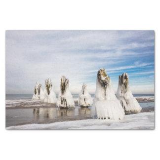 Papel De Seda Groynes en la costa de mar Báltico