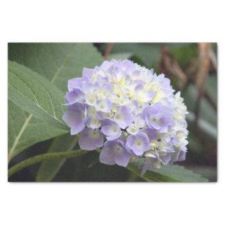 Papel De Seda Hydrangea azul 7636