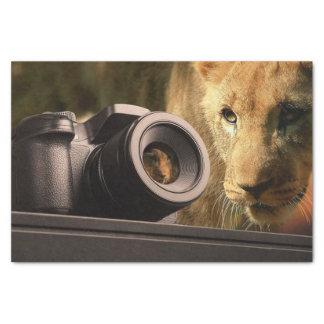 Papel De Seda León a través de la lente de cámara