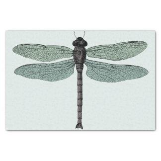 Papel De Seda libélula tipográfica antigua del vintage