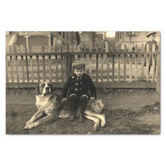 Papel De Seda muchacho de los 1890's que se sienta en la
