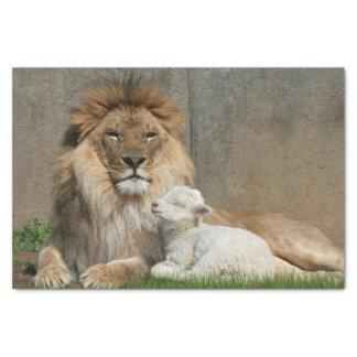 Papel De Seda Navidad del león y del cordero