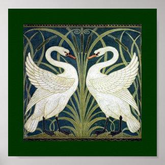 Papel pintado del cisne y de la precipitación y de póster