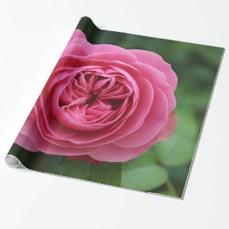 Papel regalo congelado, 76,2 cm x 1,8 m Rosados