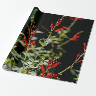 Papel rojo de Wraping del regalo del otoño