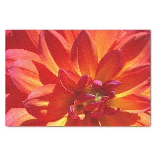 Papel seda anaranjado del crisantemo