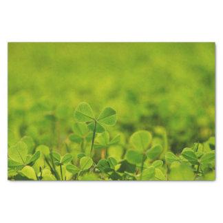 Papel seda con las hojas del trébol en hierba