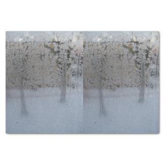 Papel seda congelado de la ventana 10lb, blanco