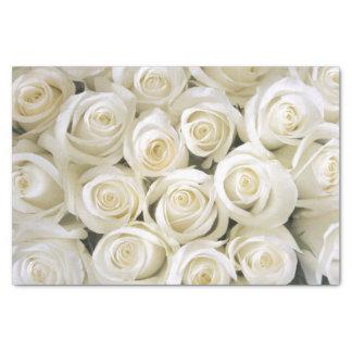 Papel seda de los rosas blancos