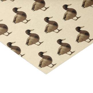 Papel seda del tono de la sepia del pato del pato