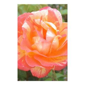 Papelería Amarillo y color de rosa rayado anaranjado