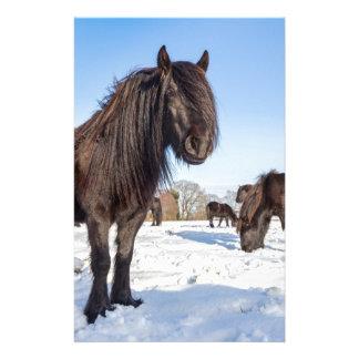 Papelería Caballos negros del frisian en nieve del invierno