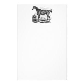 Papelería Equestrian excelente del caballo del vintage