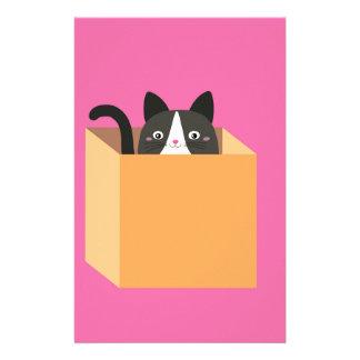 Papelería Gato en caja