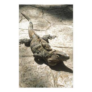 Papelería Iguana, lagarto gigante en México