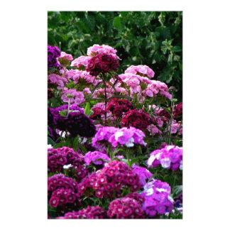 Papelería Jardín de flores en verano