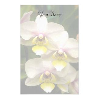 Papelería Orquídeas inmóviles