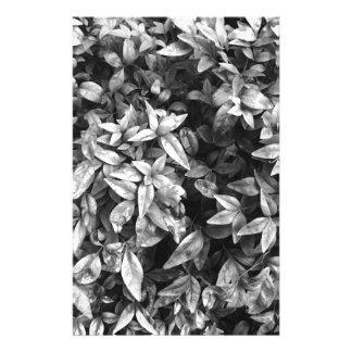 Papelería Para el floral negro y blanco del amor -