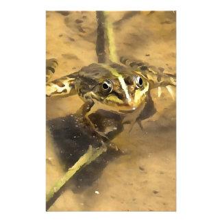 Papelería Rana del pantano