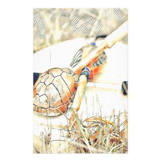 Papelería Traqueteo y tambor del clan de la tortuga