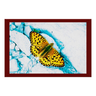 papillon 2 póster