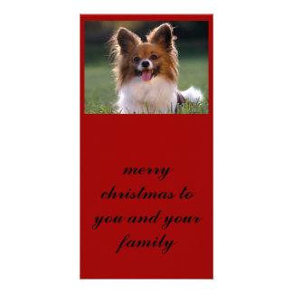Papillon, Felices Navidad a usted y su familia Tarjeta Con Foto Personalizada