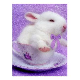 Paquete púrpura de alegría postal