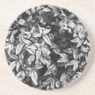 Para el floral negro y blanco del amor - portavasos