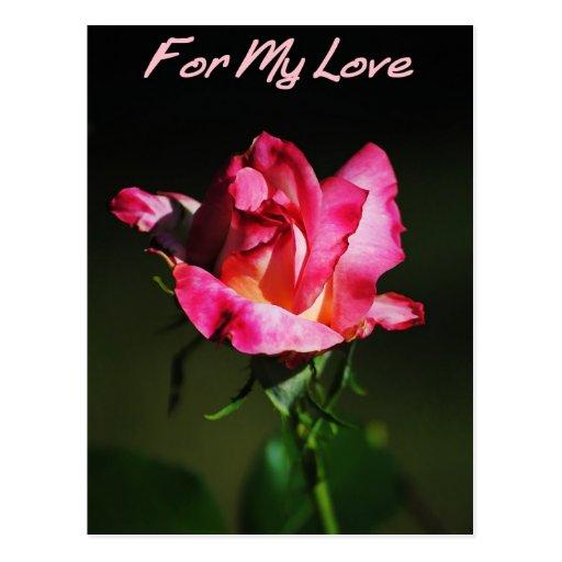 Para mi postal del capullo de rosa del amor