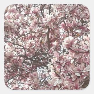 Para siempre pegatinas de la magnolia de la pegatina cuadrada