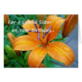 Para una hermana especial en su cumpleaños… tarjeta de felicitación