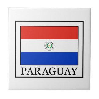Paraguay Azulejo