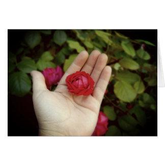 Pare y huela la tarjeta del estándar de los rosas