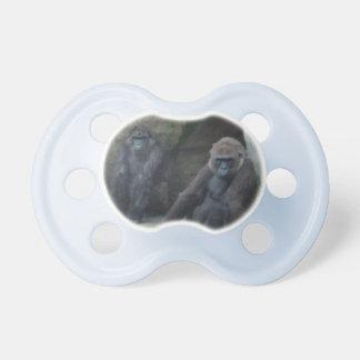 Pares curiosos de primates chupetes para bebés
